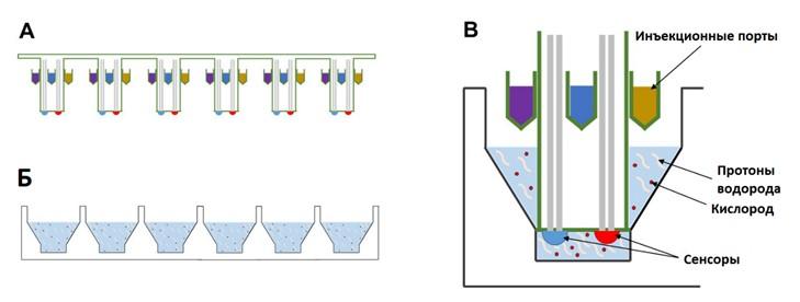 Рис. 77. Схема биоанализатора Seahorse XF.