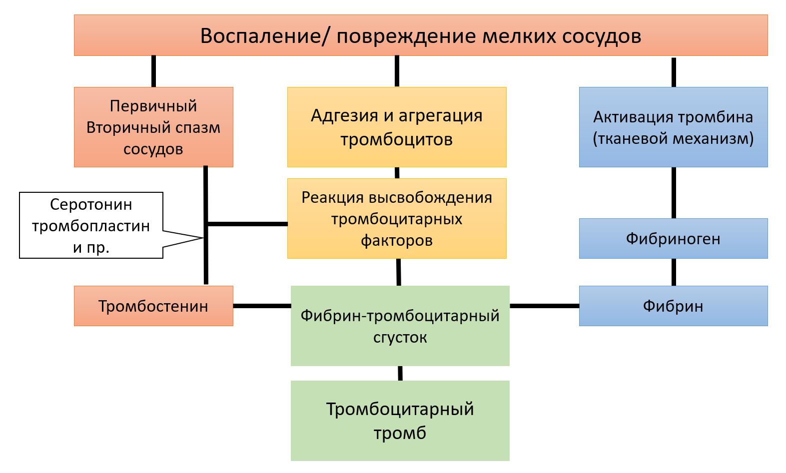 Рис. 21. Микроциркуляторный гемостаз.